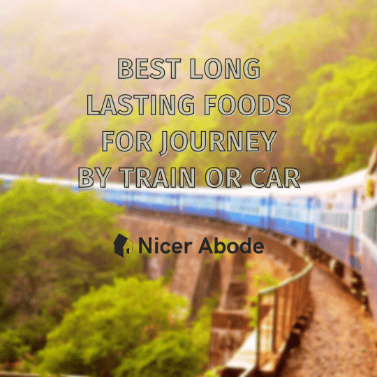 best long lasting foods for journey by train or car